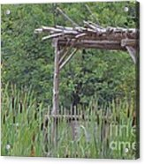 Cattails In The Garden Acrylic Print