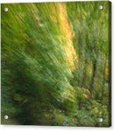 Caught Away Acrylic Print