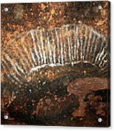Cave Painting Of A Witchittey Grub Acrylic Print