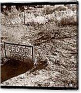 Cedar Pete Gravesite In Grafton Utah Acrylic Print