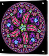 Celestial Coordinate System Acrylic Print