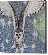 Celestial Swoop Acrylic Print by Thomas Maynard