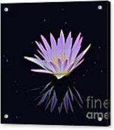 Celestial Waterlily Acrylic Print