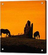 Celtic Horses In Sunset Acrylic Print