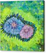 Centerpiece Acrylic Print
