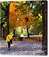 Central Park Fall Walk Acrylic Print
