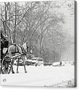 Central Park In Falling Snow Acrylic Print