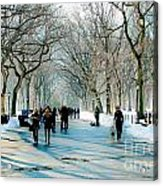 Central Park In Winter Acrylic Print