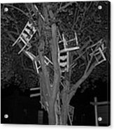 Chairy Tree Acrylic Print