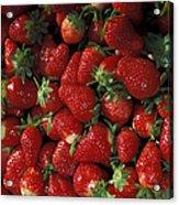 Chandler Strawberries Acrylic Print