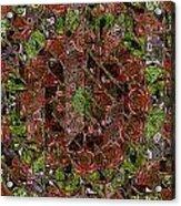 Chaos Acrylic Print by Steve K