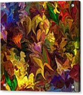 Chaotic Canvas Acrylic Print