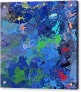 Chaotic Nature Acrylic Print