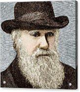 Charles Darwin, British Naturalist Acrylic Print by Sheila Terry