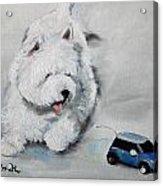 Chasing Cars Acrylic Print