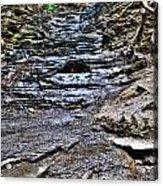 Chasing The Eternal Flame At Chestnut Ridge Park Acrylic Print