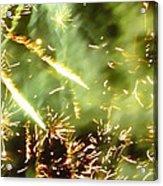 Chemistry Acrylic Print by Sharon Lisa Clarke