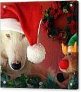 Chenoa's Santa's Helper Acrylic Print