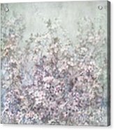 Cherry Blossom Grunge Acrylic Print by Paul Grand