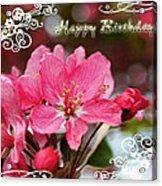 Cherry Blossoms Greeting Card  Bi Acrylic Print