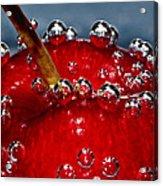 Cherry Bubbles Under Water Acrylic Print