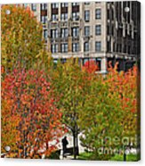 Chicago In Autumn Acrylic Print