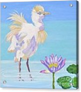 Chick And  Water Lily Acrylic Print