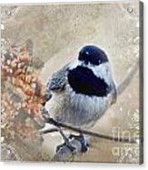 Chickadee Breakfast With Decorations Acrylic Print