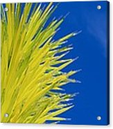 Chihuly Glass Tree Acrylic Print