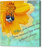Child Birthday Greeting From Parent Parents - Cosmos And Bumblebee Acrylic Print