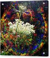Childhood Dreams Acrylic Print