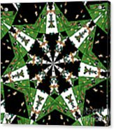 Children Animals Kaleidoscope Acrylic Print