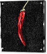 Chilli Pepper, Woodcut Acrylic Print by Gary Hincks