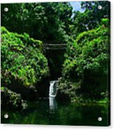 Chings Pond  Acrylic Print by Ken Smith