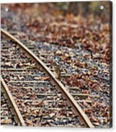Chipmunk On The Railroad Track Acrylic Print