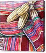 Choclos Entre Aguayos Acrylic Print