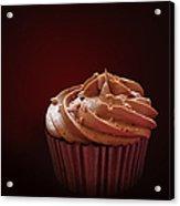 Chocolate Cupcake Isolated Acrylic Print by Jane Rix