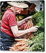 Choosing Carrots Acrylic Print by Norma Warden