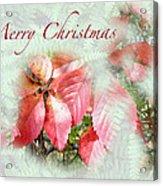 Christmas Card - Virginia Creeper In Autumn Colors Acrylic Print