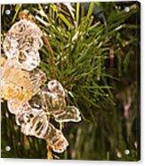 Christmas Crystal Angel 1 B Acrylic Print