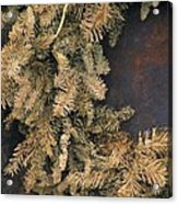 Christmas Past Acrylic Print by Joe Jake Pratt