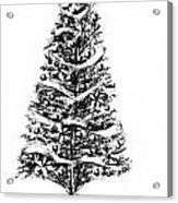 Christmas Tree Bw Acrylic Print