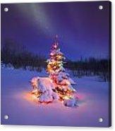 Christmas Tree Glowing Under The Acrylic Print