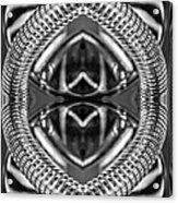 Chromata Acrylic Print