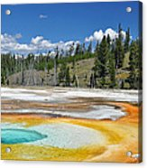Chromatic Pool Yellowstone National Park Acrylic Print