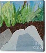 Chromitic Iris Acrylic Print