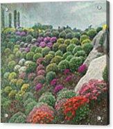 Chrysanthemum Garden - Ott's Greenhouse Schwenksville Pa Acrylic Print