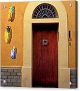 Cicada Door Arles France Acrylic Print