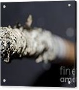 Cigarette Acrylic Print