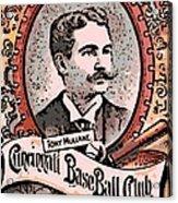 Cincinnati Baseball Acrylic Print